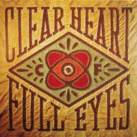 Craig Finn Clear Heart Full Eyes LP VINYL Full Time Hobby 2012 NEW