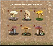 Kazakhstan 2019.  Kazakhstan mushrooms. Plants. Flora. MNH