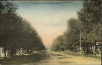 Spring Valley MN South Section Ave c1910 Postcard