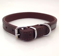 NEW NIGHT WALK LEATHER BROWN DOG COLLAR REFLECTIVE SAFETY MEDIUM COLLIE SPANIEL
