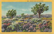 Linen postcard, Joshua Palms on the Desert