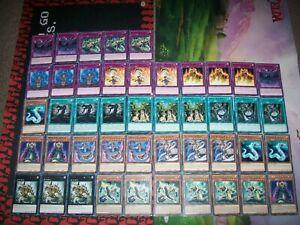 45 Card Reptile Deck Core Snake Rain Ogdoadic ANGU Yu-Gi-Oh!