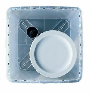 Plate Storage Box with Lid & Very Tube - Plate Size 190 to 330mm - NV Boxes