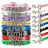 Rhinestone Bling Personalized Letter Charm Dog Collar & Leash Pet Cat Name XS-L
