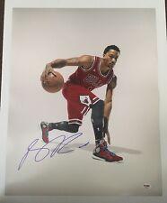 Derrick Rose Signed Autographed 16x20  Photo Bulls Knicks PSA/DNA COA 1