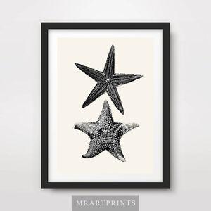SEASIDE BLACK WHITE STARFISH Art Print Poster Home Decor Room Interior Design