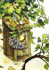 Postcard Art Birds Birdhouse Garden Tree Nest Inge Look Finland