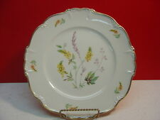 Edelstein China DORCHESTER One Dinner Plate