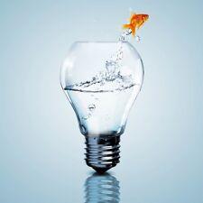 Wallario Premium Acrylglasbild Goldfisch springt aus Aquarium 50x50 cm