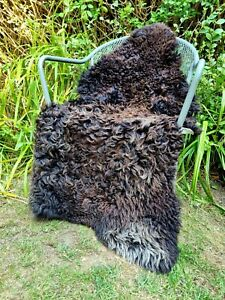 XXXXL Huge British Curly Jacobs Brown Sheepskin Rug - 130cm by 80cm A++ (2707)