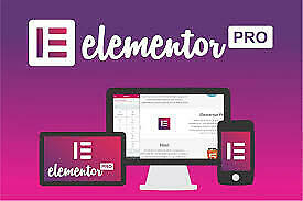 Elementor PRO 3.3.2 new version  WordPress Page Builder  100% Activated
