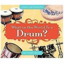 What in the World Is a Drum? by Mary Elizabeth Salzmann (2012, Book, Other)