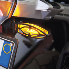 LED clignotants protection BMW r1200gs LC + LC Adventure, LED Indicator protectors