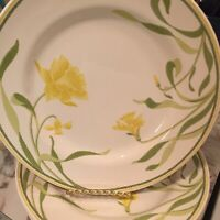Franciscan Daffodil Greenhouse Dinner Plates 10.75 Inch Set Of Four