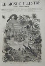 GRAVURE SUR BOIS 1874  PARIS NOUVEAU PALAIS DES REPTILES AU JARDIN DES PLANTES