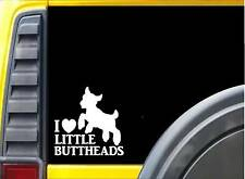 I love little buttheads k569 Sticker 6 inch goat decal