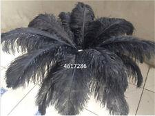 Wholesale, 10-100pcs special color ostrich feathers 6-16inches/15-40cm 16 colors