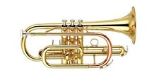 NEW RS BERKELEY SIGNATURE SERIES STUDENT CORNET CR611 WITH WARRANTY