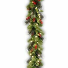 National Tree CW7-306-9A-1 9 ft. x 10 inch Crestwood Spruce Garland With Silver Bristle