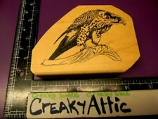 Hawk Bird Branch Ready To Pounce Rubber Stamp Wildlife Enterprises Creakyattic
