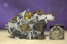 Admire Pallasite Meteorite from Kansas USA 8.5 gram part slice