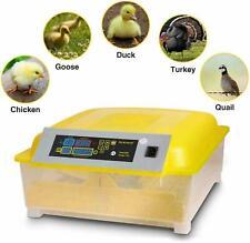 Incubadora de Huevos Automática para 48 Huevos Fácil Funcionamiento