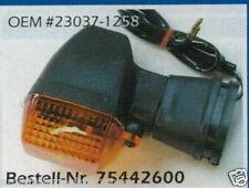 Kawasaki ZX 6 R - Indicator - 75442600