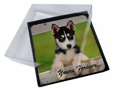 4x Husky Puppy 'Yours Forever' Picture Table Coasters Set in Gift Box, AD-H67yC