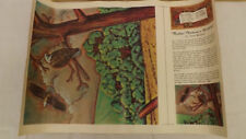 Vtg Craftaid Doodle Page Mother Nature's Wildlife Scene Series 11-B/6 Gene Nolan