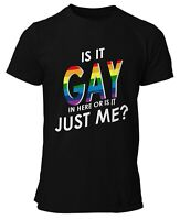 Is it Gay in here or is it just me? Pride T-shirt
