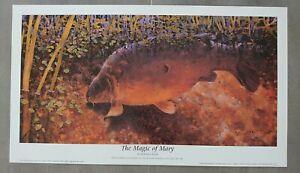 Fishing Angling Art Print Fish Record Carp The Magic of Mary by Richard Smith