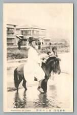 Korean Horseman~Antique KOREA Horse Riding Postcard~Seoul? 1910s