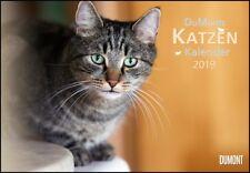 DuMonts Katzen-Kalender 2019, DUMONT Kalenderverlag