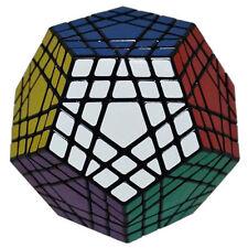 ShengShou Gigaminx Magic Cube Puzzle