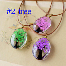 Real Dried Flower Glass Wishing Bottle Dandelion Sweater Chain Pendant Necklace