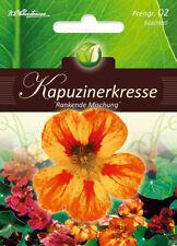 5680980 Kapuzinerkresse rankend Kresse Läusefangpflanze Tropaeolum Samen