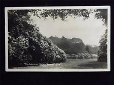 OLD POSTCARD OF RHODODENDRON WALK TO HEAVENS GATE   - USED