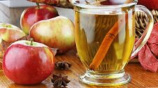 APPLE CIDER FRAGRANCE oil simmer Candle making hand poured DROPPER free