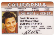 Angel actor of Buffy the Vampire Slayer Burbank CA  I.D card Drivers License