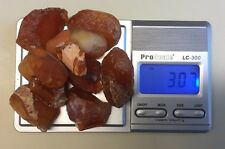 Lake Superior Agates Candy Coral Fire Crystal~Natural Polish Found 60s Osseo MN