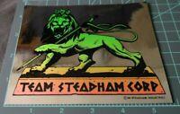 "Vintage 1986 Team Steadham Corp. Rare Chrome Foil - ""Lion"", Powell Peralta, NOS"