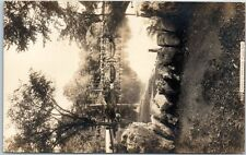"Niagara Falls, NY Postcard RPPC Postcard ""Bridge in the Park"" F.B. PECK PHOTO"