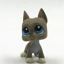 LPS #184 Littlest Great Dane Dog Pet Shop Figure Grey Blue Eyes Kids Boy Toys