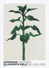 ELLSWORTH KELLY Sunflower 33.5 x 24.5 Offset Lithograph 2012 Minimalism