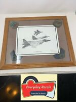 Us Air Force F-15 Dale Adkins Aviation Art & Worn Patches Framed Vintage 23x19