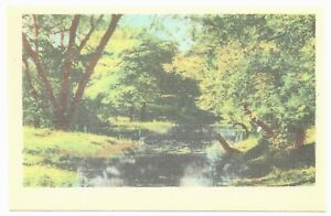 Beautiful Creek and Colorful Trees NC 1940s Linen by Asheville Postcard Co.