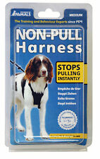 Company of Animals Non-Pull Harnais Pour Chiens Moyens Taille M