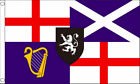 Lord Protector Banner And Command Oliver Cromwell 1658 to1659 5