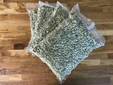 Świeże Pestki Dyni 1 kg Kürbiskerne, Graines de citrouille, Pumpkin seeds