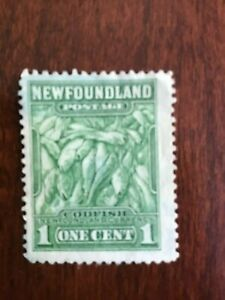"""Newfoundland - Canada 1cent used stamp  Green """"COD FISH"""" VG Lot 9949"""